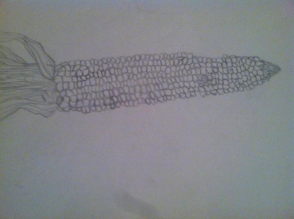 Corn by babybee1