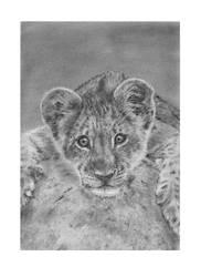 Lion Cub DA by CarlSyres