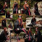 Blackbird Exclusive Stock