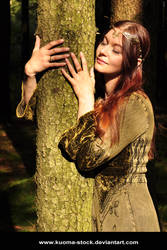 Treehugger 2 by Kuoma-stock