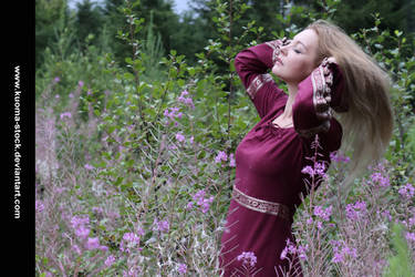 Fireweed 6 by Kuoma-stock
