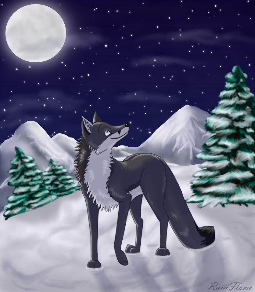 On a Cold Night by x-RainFlame-x