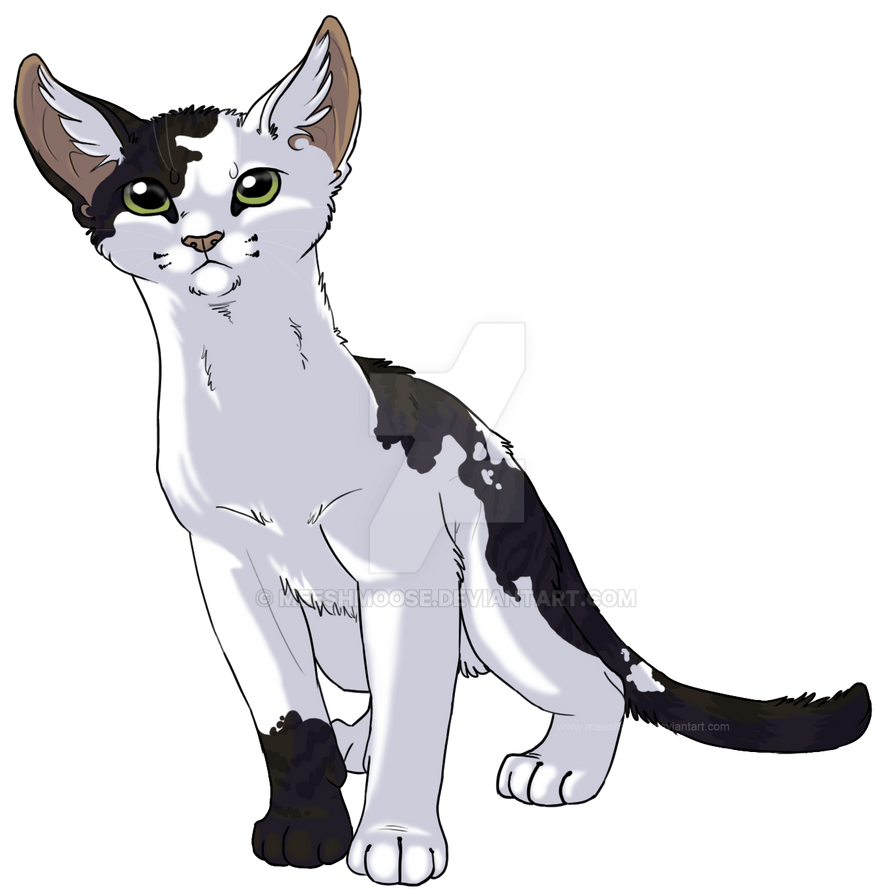 hollowpaw TR by meeshmoose
