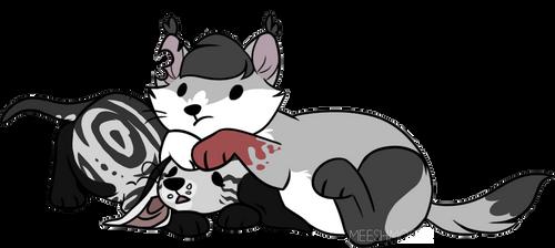 pair of kittins