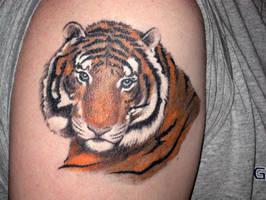 Tiger Portrait color by superchickenn123