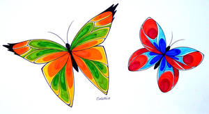 The genesis of the butterfly