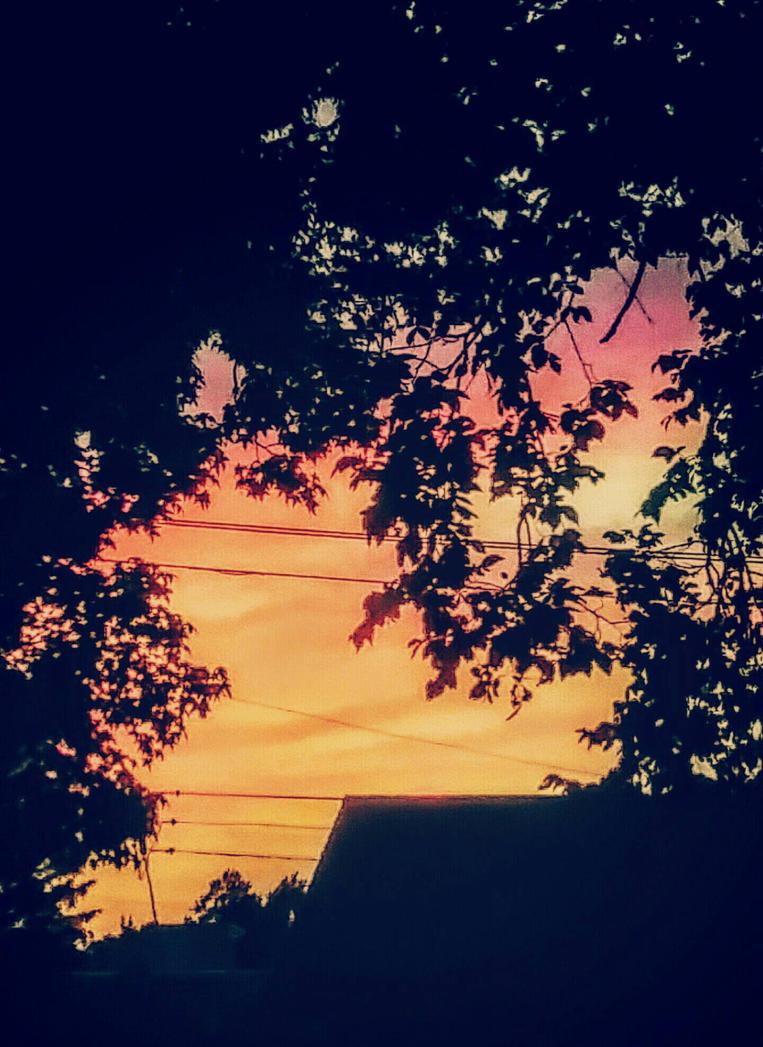 sunset by SnakiePoo