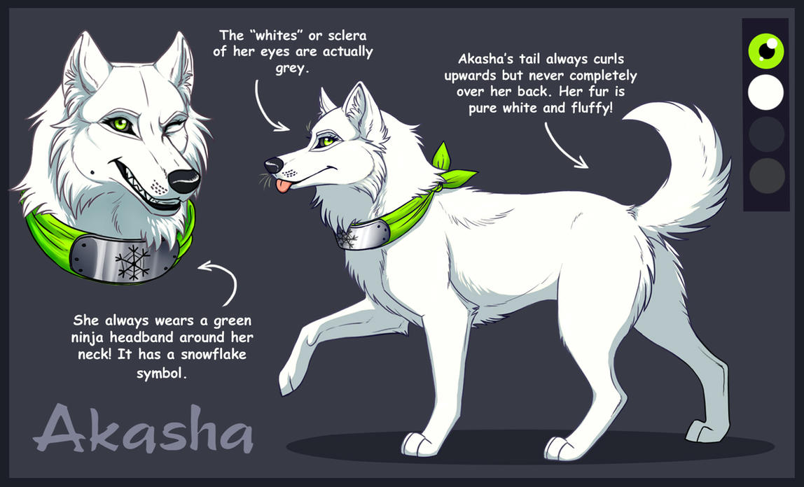 AKASHA-2015 Reffsheet by Sedillio