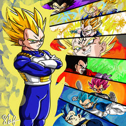 Vegeta Evolution