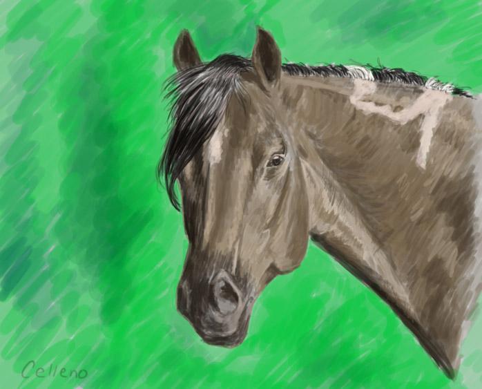 Celleno's Profile Picture