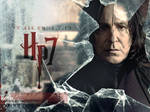 DH: Part 2 - Snape