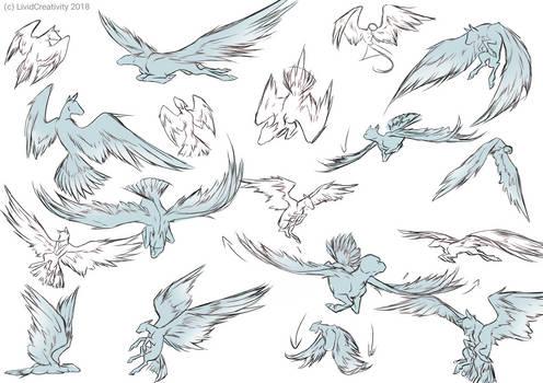 Wing gestures/poses practice [F2U]