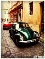 Old Beetle by norne-nornir
