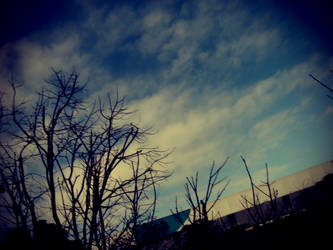 sky in my eyes by pflee77