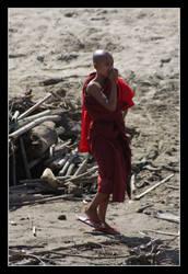 Burmese Buddhist Monk II
