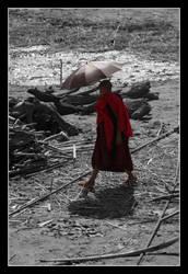 Burmese Buddhist Monk III