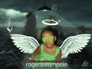 rogeriosampaio's Profile Picture