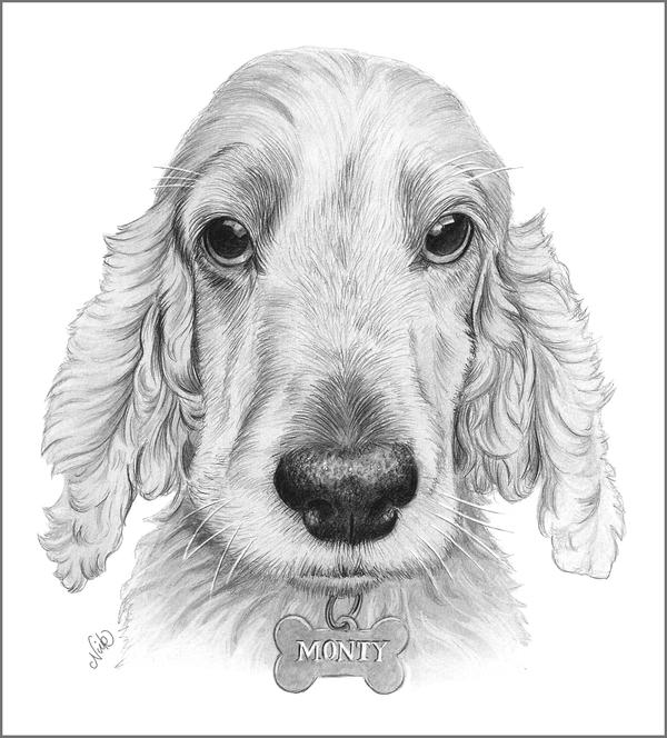 Monty by NicksPencil