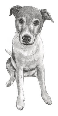 Buddy Sketch
