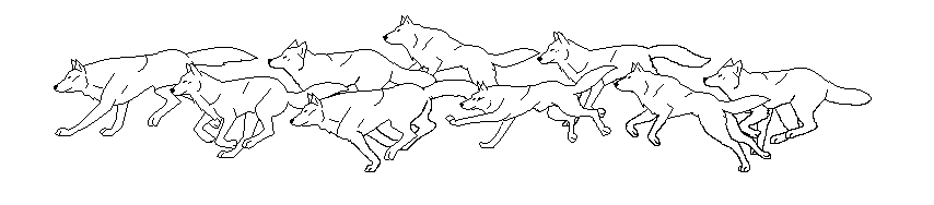 How to Draw a Running Wolf 7 Steps with Pictures  wikiHow
