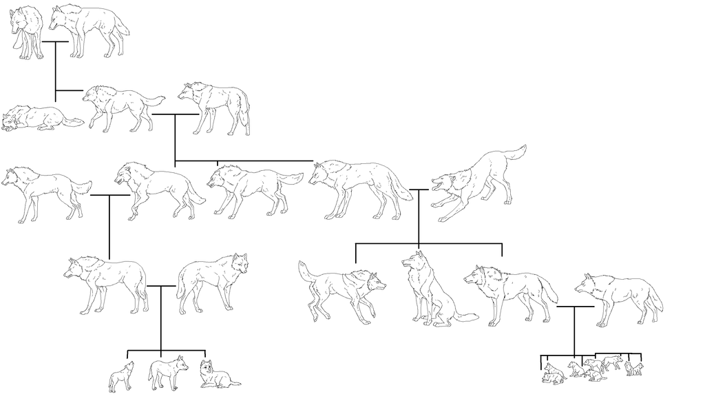 Wolf family Tree lineart by WhiteWolfCrisis13