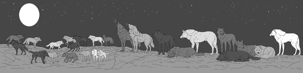 Wolf Pack (25 total) by WhiteWolfCrisis13