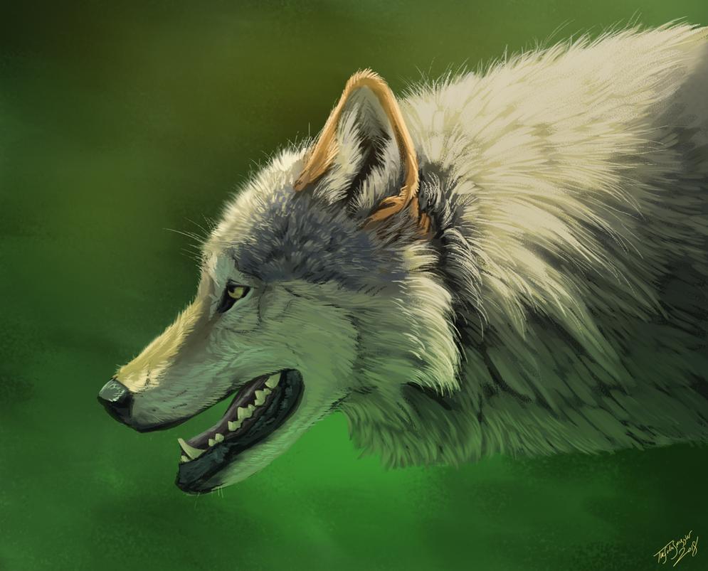 Blazin' Wolfo by TheSodaSmuggler