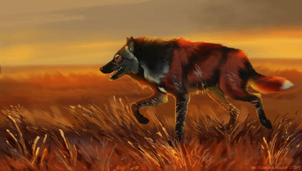 The Wolf on the Red Grass