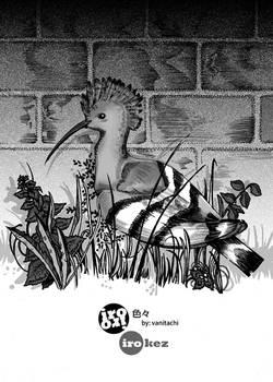 IroIro Chapter 2 cover