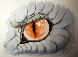 Dragon Eye by KarolineJuzanx