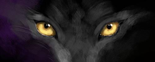 Black Fur by KarolineJuzanx