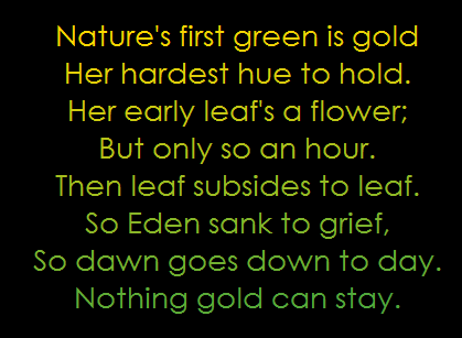 an interpretation of nothing gold can stay a poem by robert frost Robert frost has a fine talent for putting words into poetry words which are normally simplistic spur to life when he combines them into a whimsical poetic masterpiece his 'nothing gold can stay' poem is no exception although short, it drives home a deep point and meaning life is such a fragile .