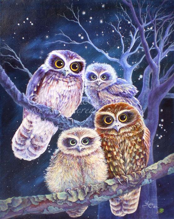 Boobook Owl Family by leelastarsky