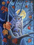Harvest Moon Owls.