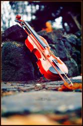 Violin by emrepullukcu