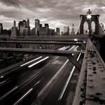 New York's Rat Race