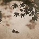 Japan . Requiem by CatchMe-22