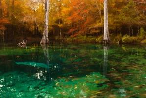 The Enchanted Realm by Jordan-Roberts
