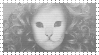 Mr Kitty by neonferrets
