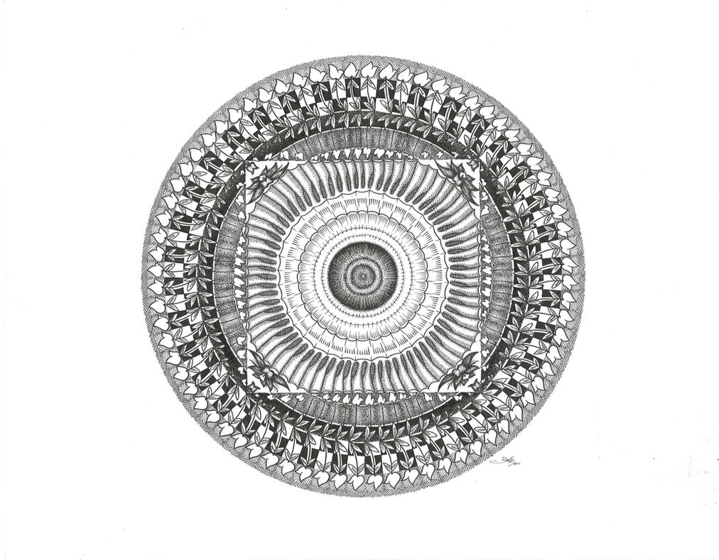 Rose Mandala By Meathive