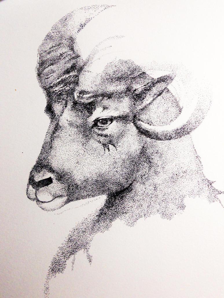 Ram W.I.P. by Miller-M