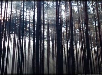 silent voice by kaoru-kamiya