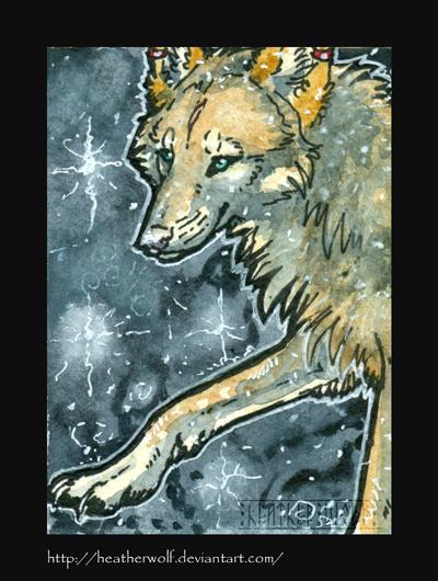 Night tales by HeatherWolf