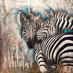 Soul zebra