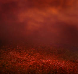 Deep Red by lady-symphonia-stock
