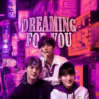DREAMING FOR YOU - for JinTaeKook