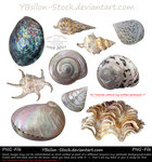 Mussels Set by YBsilon-Stock