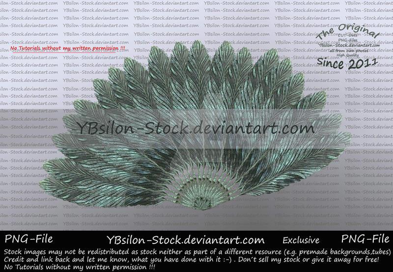 Fan Exclusive by YBsilon-Stock