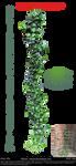 Ivy by YBsilon-Stock by YBsilon-Stock