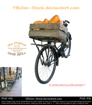 Cheese on Bicycle by YBsilon-Stock